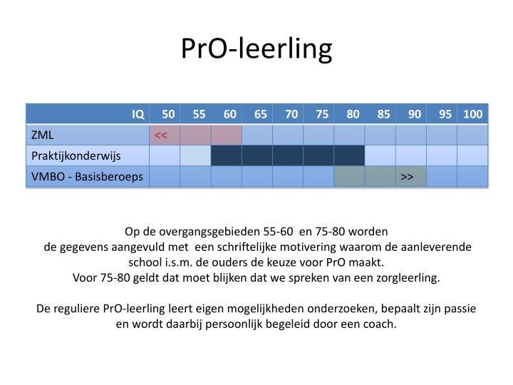 PrO-leerling