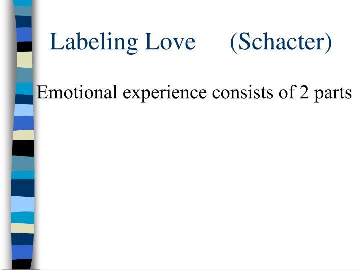Labeling Love (Schacter)