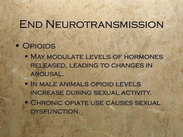 End Neurotransmission