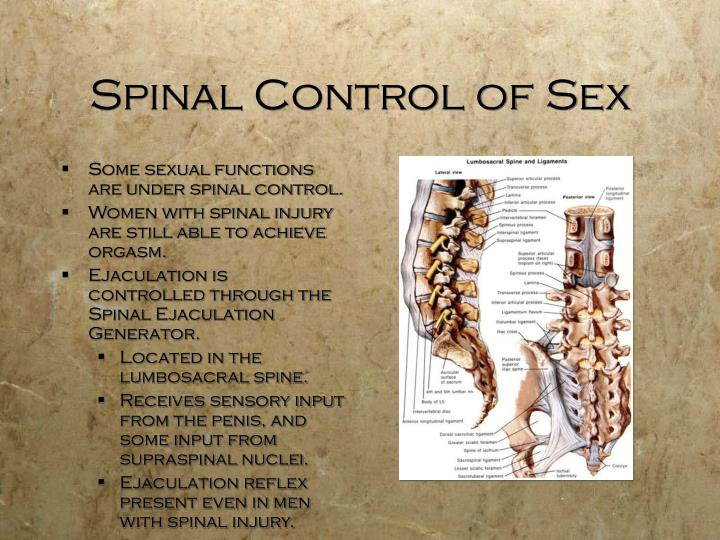 Spinal Control of Sex