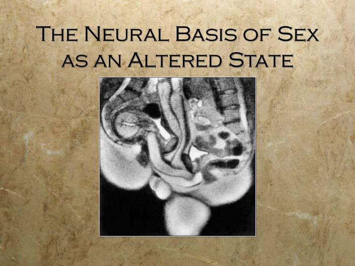 The neural basis of sex as an altered state