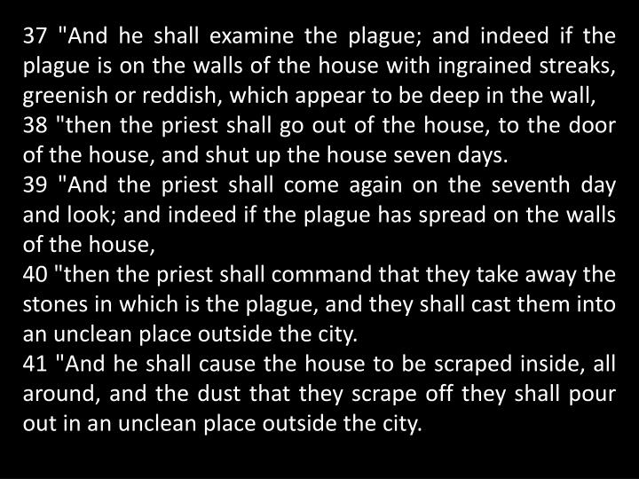 """37 """"And he shall examine the plague; and indeed if the plague is on the walls of the house with ingrained streaks, greenish or reddish, which appear to be deep in the wall,"""