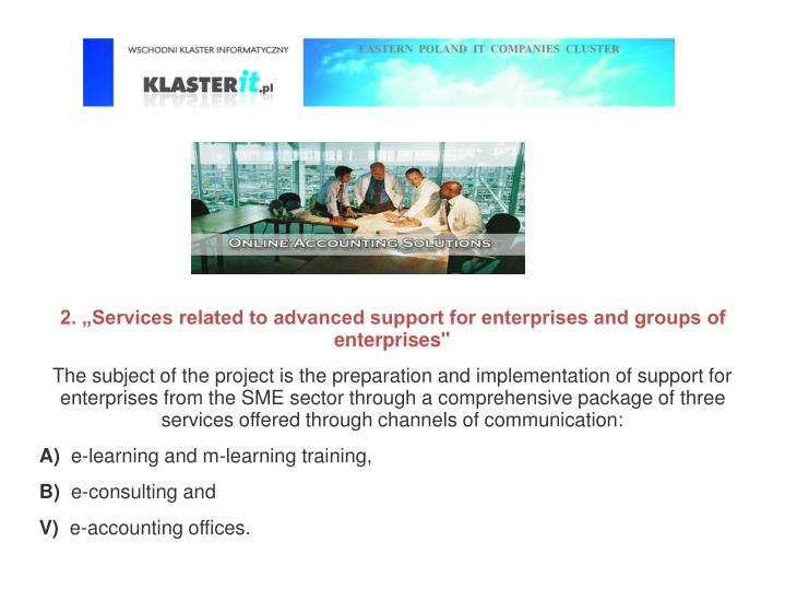 "2. ""Services related to advanced support for enterprises and groups of enterprises"""