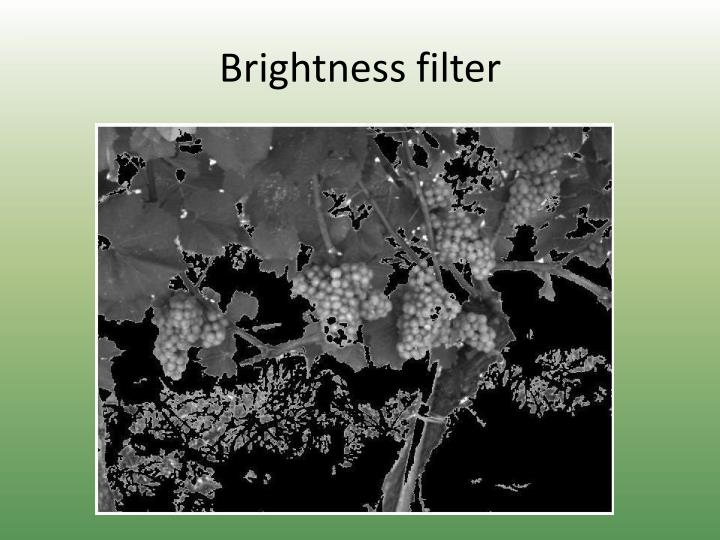 Brightness filter