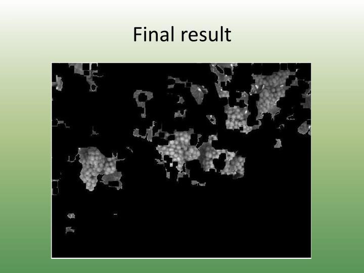Final result