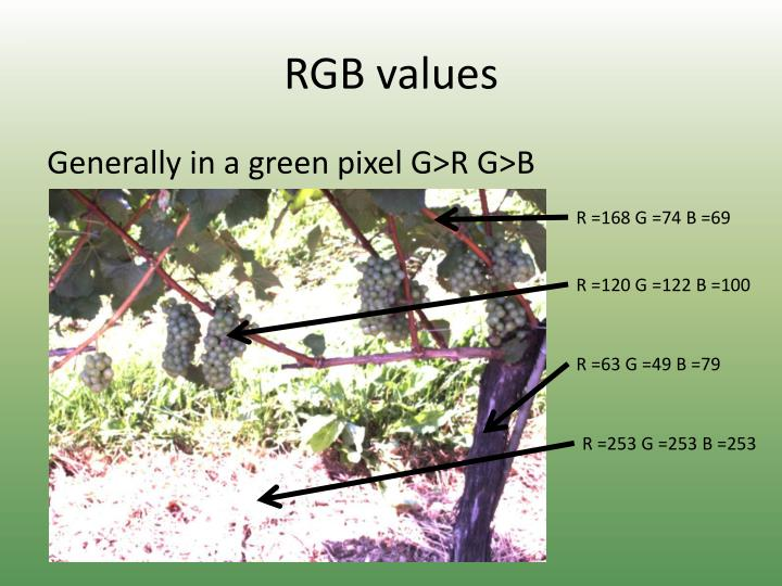 RGB values