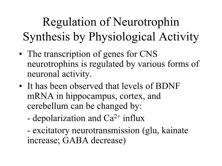 Regulation of Neurotrophin Synthesis by Physiological Activity