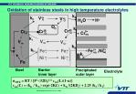 oxidation of stainless steels in high temperature electrolytes