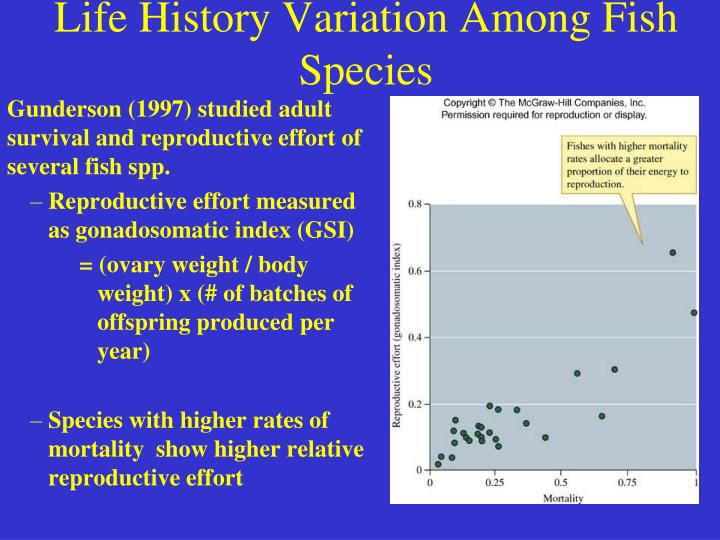 Life History Variation Among Fish Species