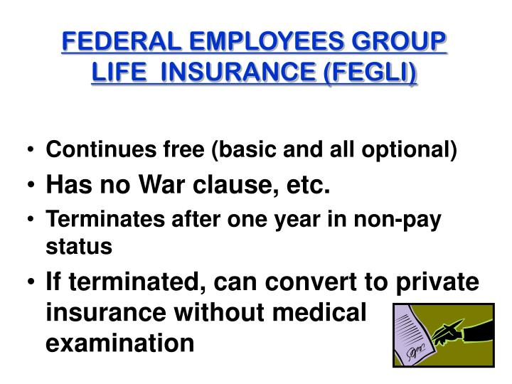 FEDERAL EMPLOYEES GROUP LIFE  INSURANCE (FEGLI)