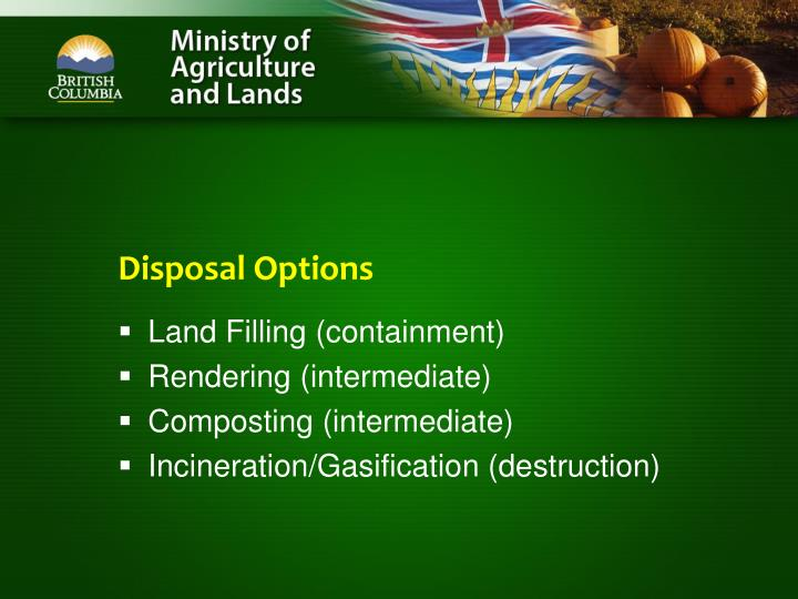 Disposal Options