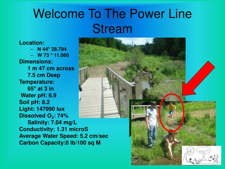 Welcome To The Power Line Stream