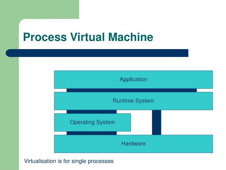 Process Virtual Machine