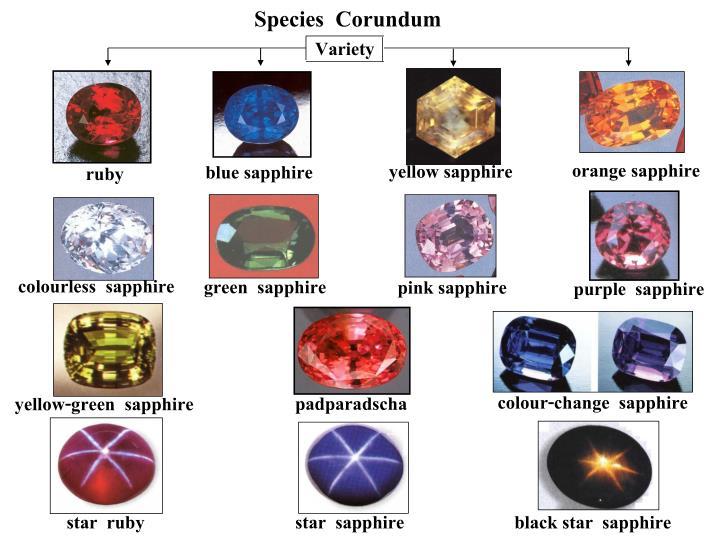 Species  Corundum