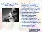 roles and responsibilities of the prot g