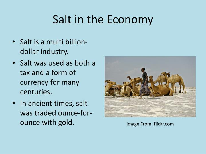 Salt in the Economy