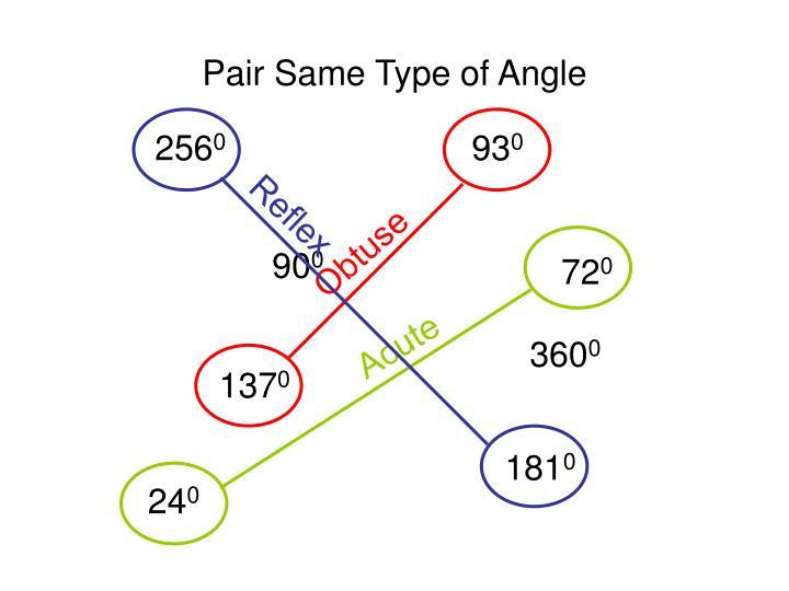 Pair Same Type of Angle