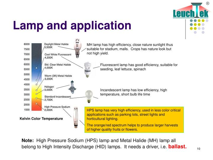 Lamp and application