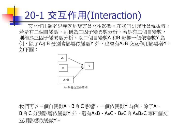 20 1 interaction