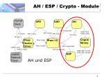 ah esp crypto module