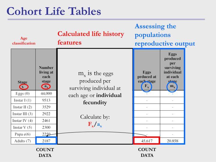 Age classification