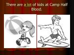 there are a lot of kids at camp half blood
