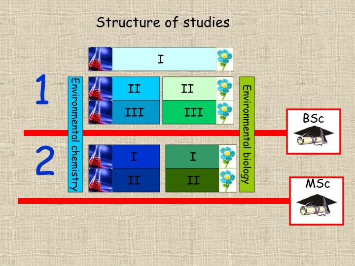 Structure of studies