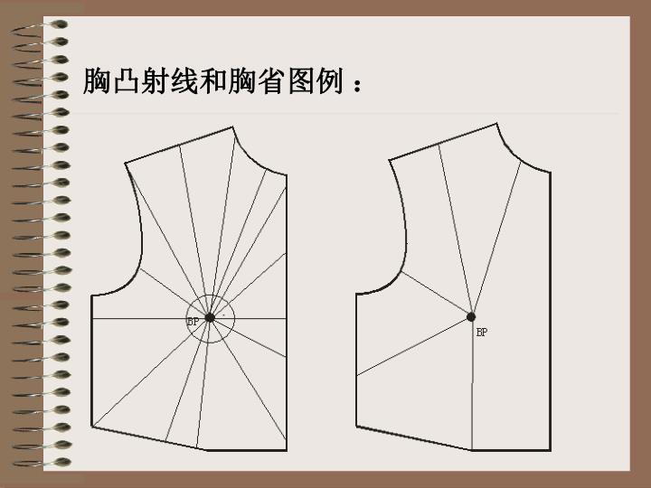 胸凸射线和胸省图例 :