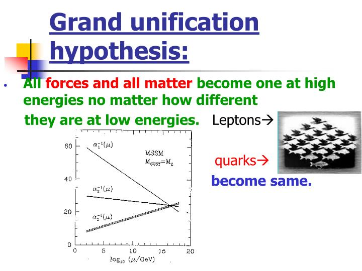 Grand unification hypothesis: