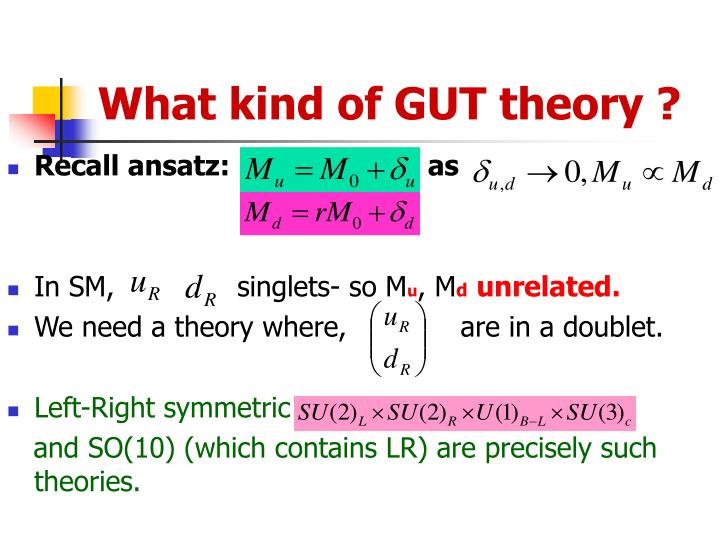 What kind of GUT theory ?
