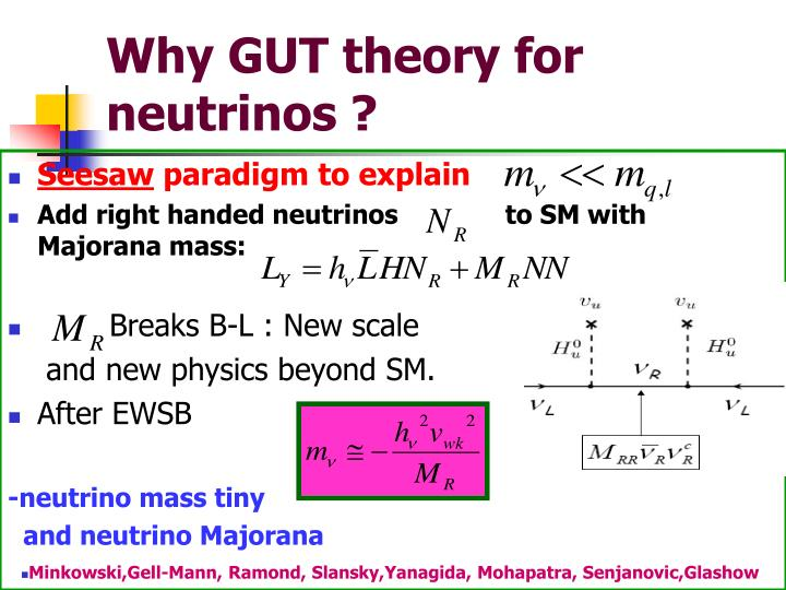 Why GUT theory for neutrinos ?