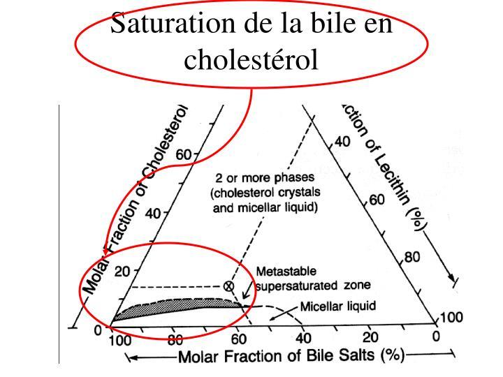 Saturation de la bile en cholestérol
