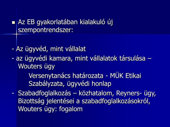 Az EB gyakorlatában kialakuló új szempontrendszer: