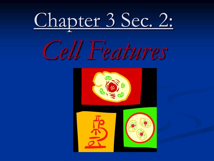 Chapter 3 sec 2 cell features