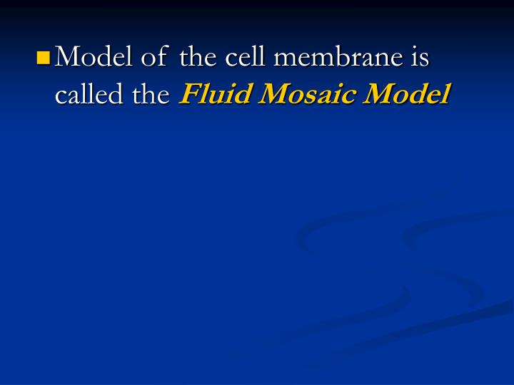 Model of the cell membrane is called the