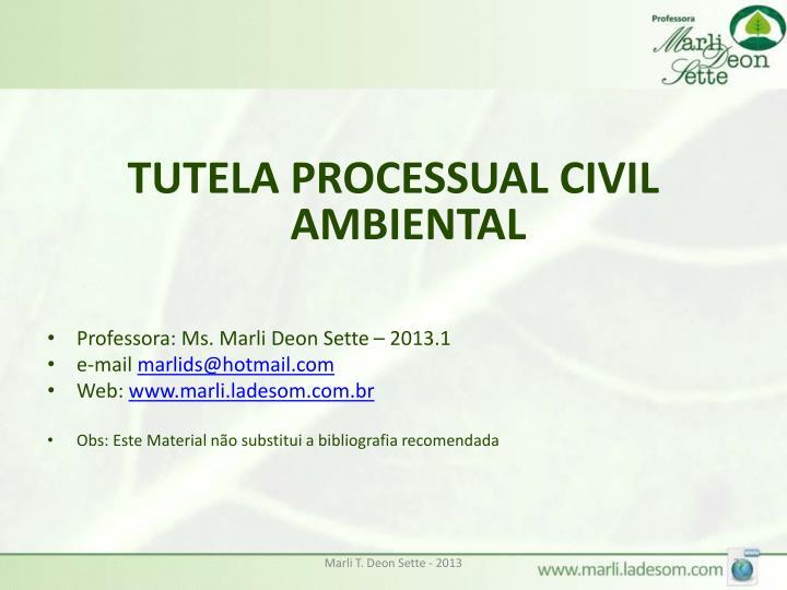 TUTELA PROCESSUAL CIVIL AMBIENTAL