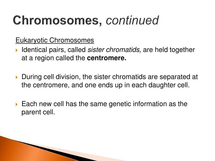 Chromosomes,