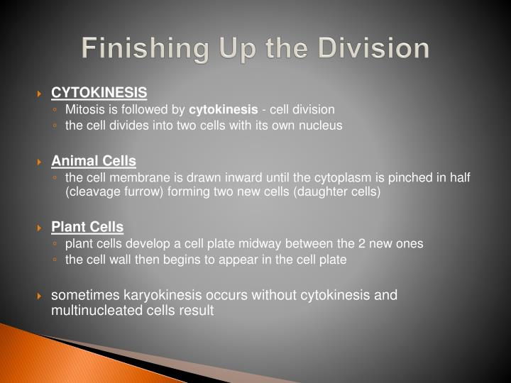Finishing Up the Division