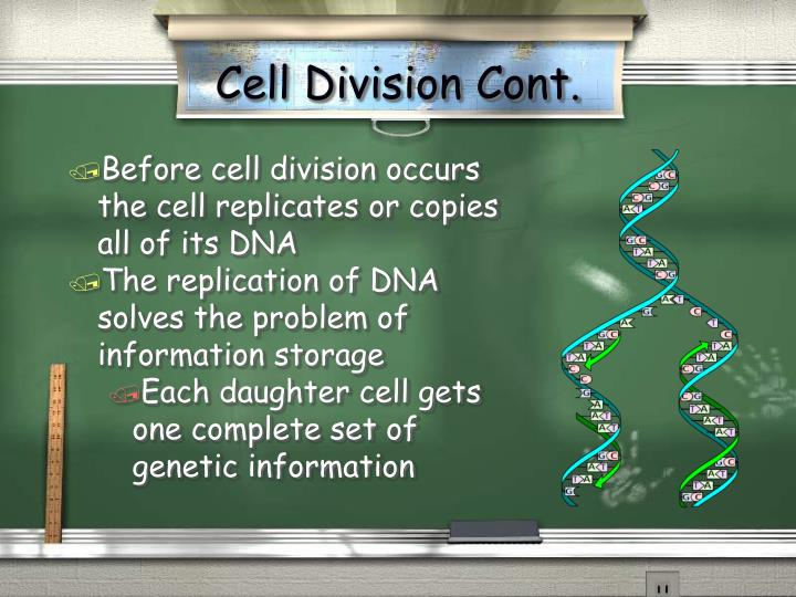 Cell Division Cont.