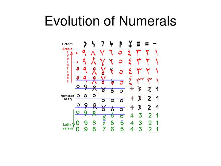 Evolution of Numerals