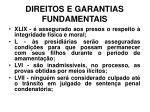 direitos e garantias fundamentais10