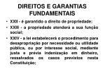 direitos e garantias fundamentais21