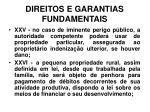 direitos e garantias fundamentais22