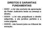 direitos e garantias fundamentais28