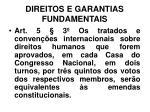 direitos e garantias fundamentais3
