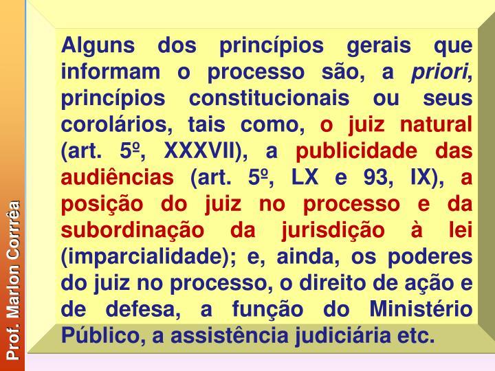 Alguns dos princípios gerais que informam o processo são, a