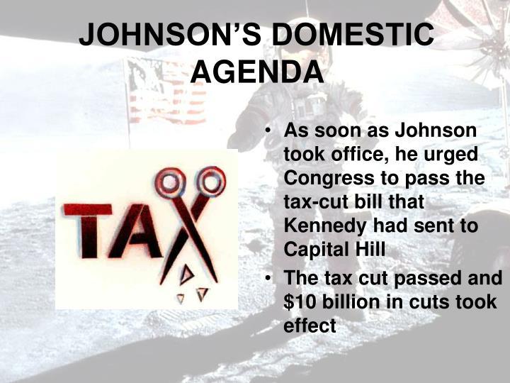 JOHNSON'S DOMESTIC AGENDA