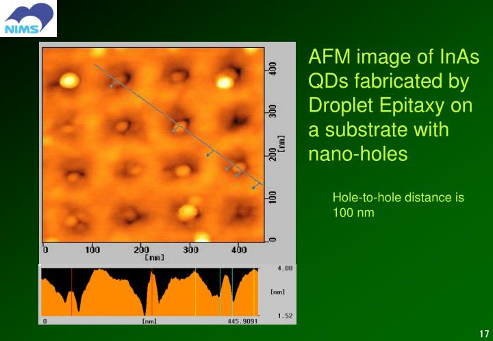 AFM image of