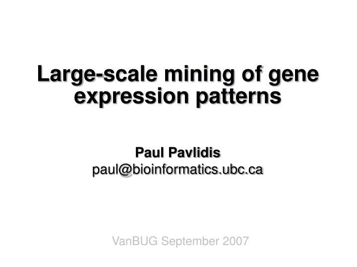 Large scale mining of gene expression patterns