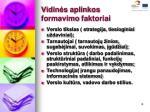 vidin s aplinkos formavimo faktoriai